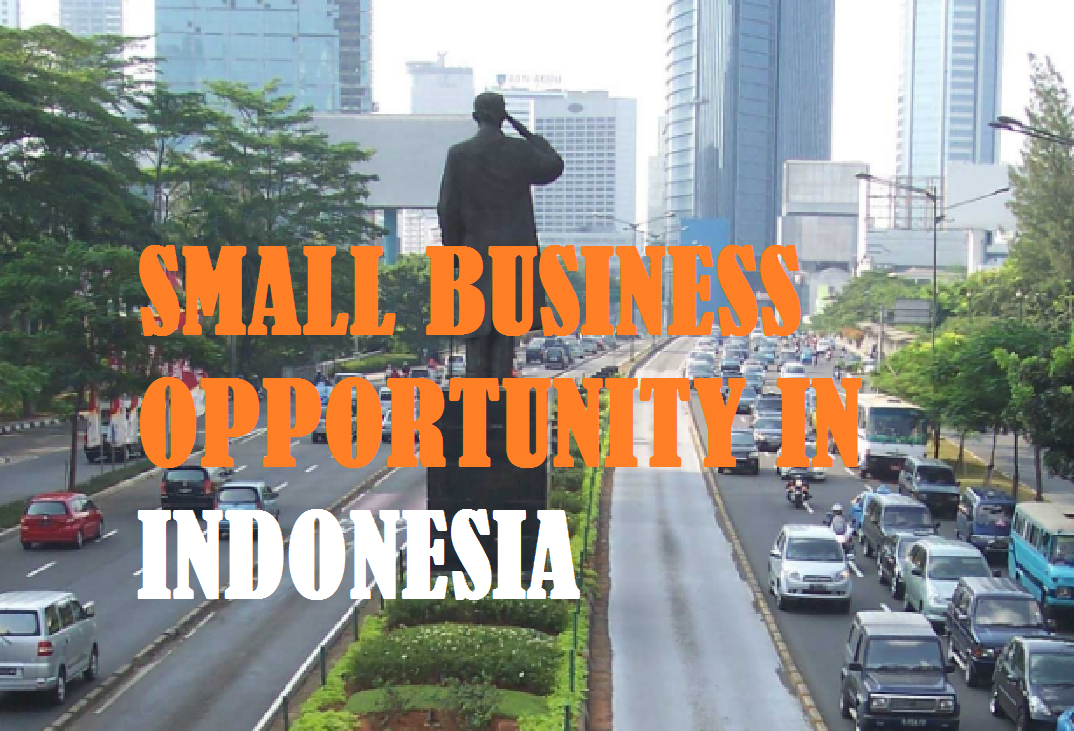 SMALL BUSINESS OPPORTUNITY IN INDONESIA