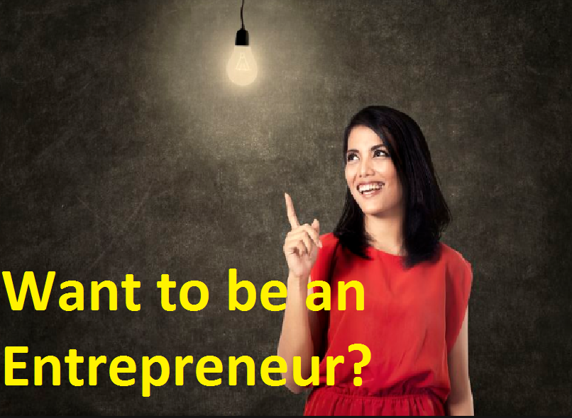 Entrepreneurs Their Functions and Importance