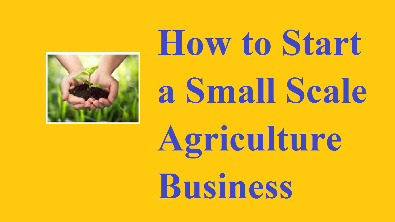 How to Start a Small Scale Agriculture Business