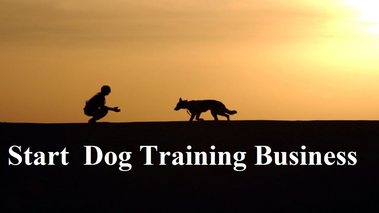 How to Start Dog Training Business Business in UK