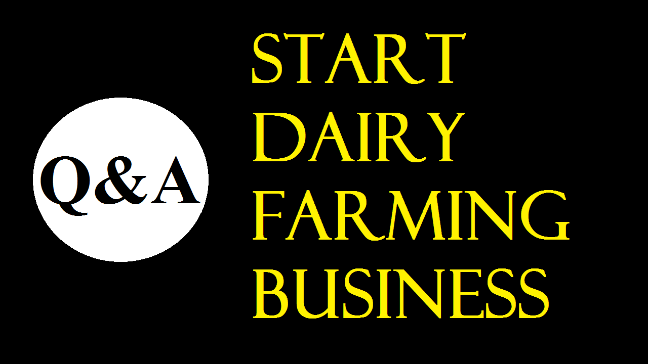 Start Dairy Farming Business in India