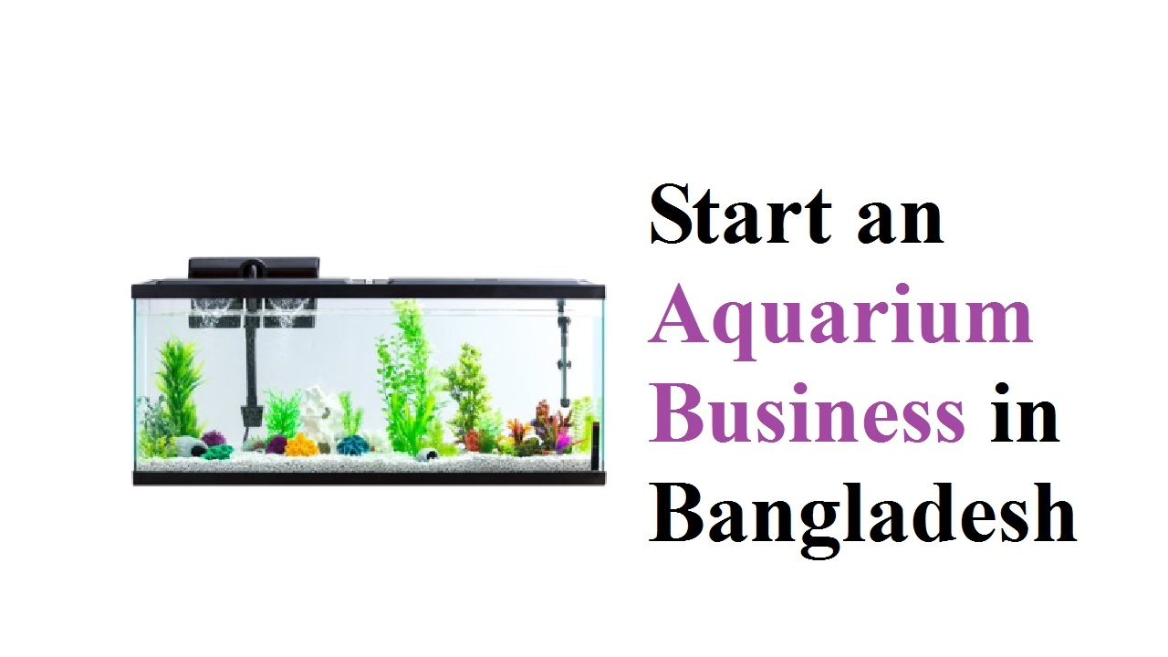 How to Start an Aquarium Business in Bangladesh