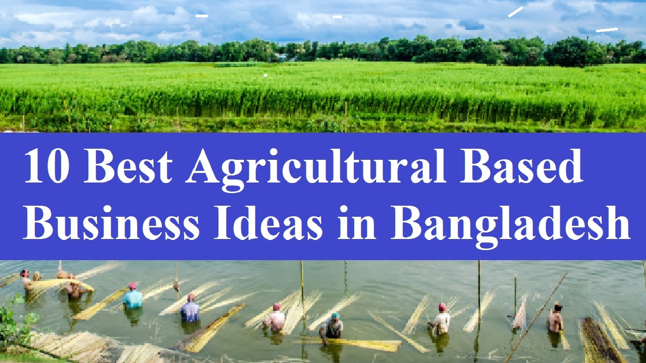 10 Best Agricultural Based Business Ideas in Bangladesh