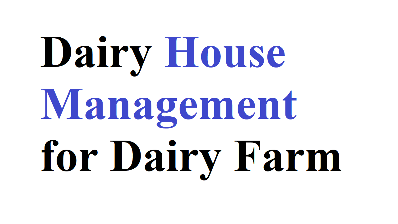 Dairy House Management for Dairy Farm