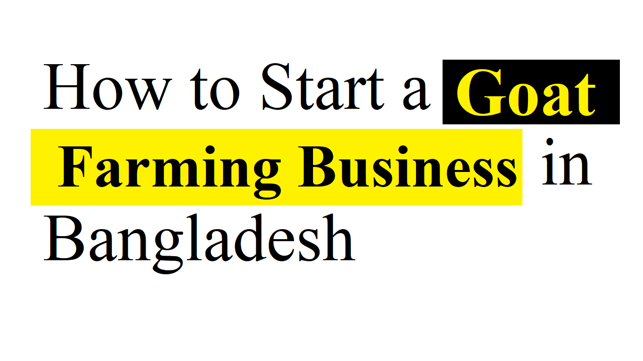 Goat Farming Business in Bangladesh