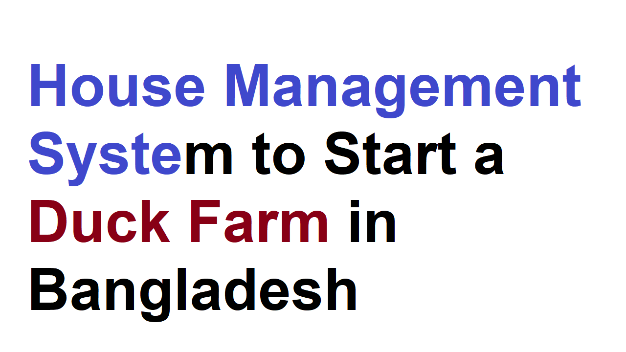House Management System to Start a Duck Farm in Bangladesh