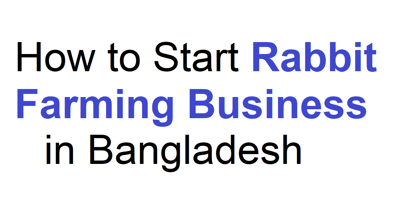 How to Start Rabbit Farming Business in Bangladesh