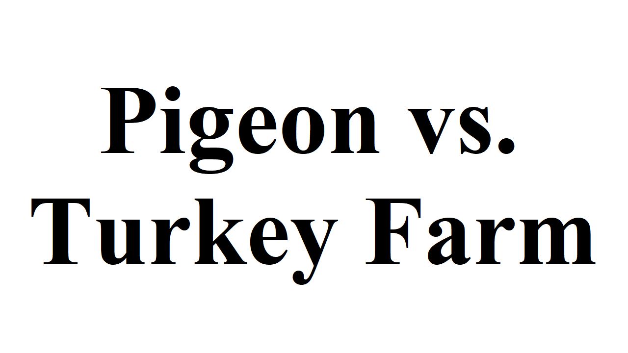 Pigeon vs. Turkey Farm