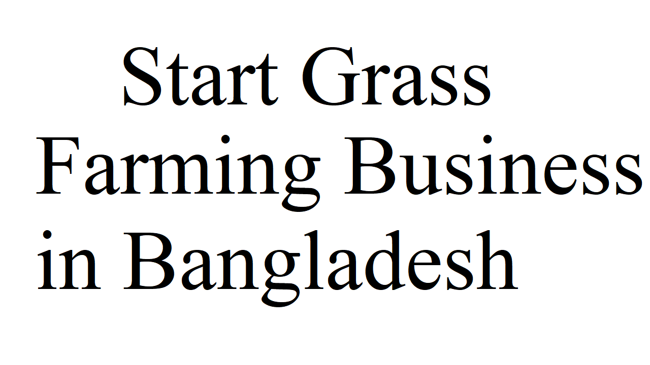 Start Grass Farming Business in Bangladesh