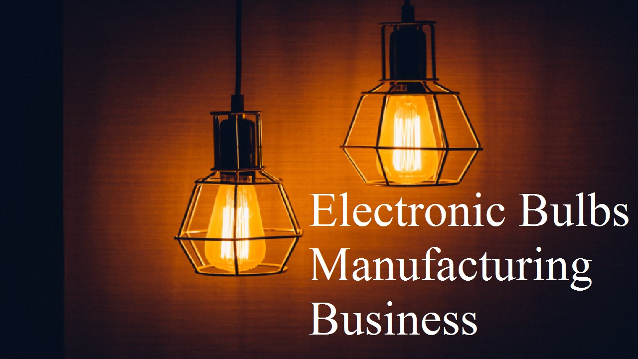 Electronic Bulbs Manufacturing Business