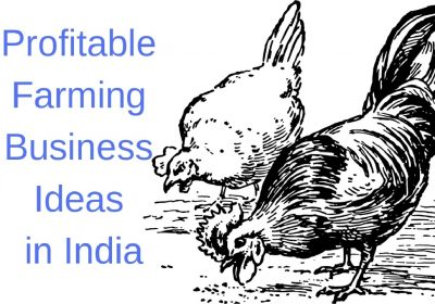 Profitable Farming Business Ideas in India
